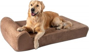 Best Rated Orthopedic Dog Beds